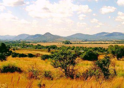 Koepel panorama